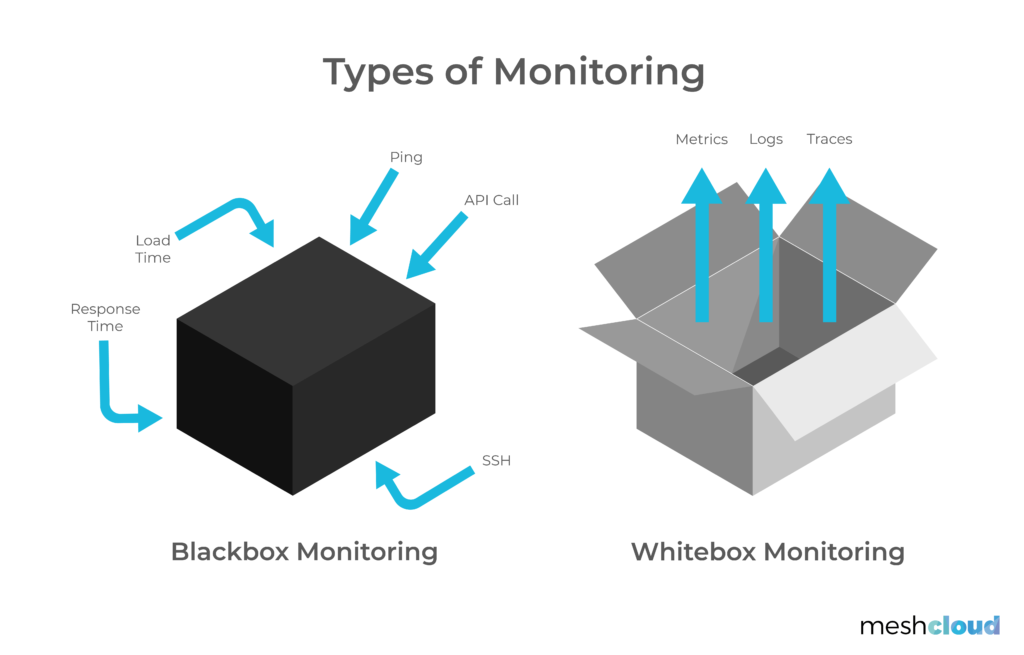 Illustration of whitebox and blackbox monitoring.