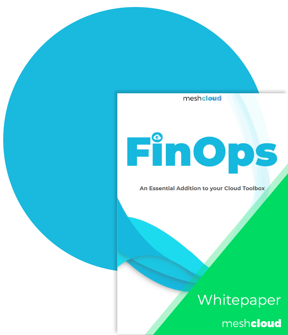 FinOps Cover