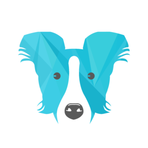Collie open-source CLI for Cloud Governance
